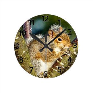 Squirrel Round Clock