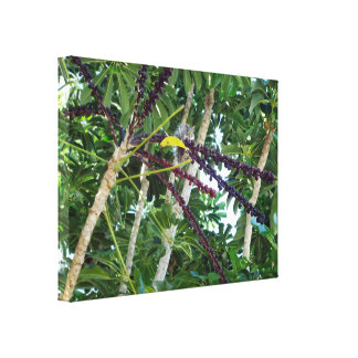 Squirrel Sees You Stretched Canvas Print