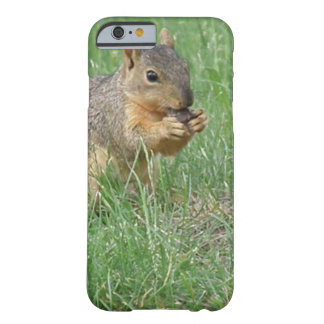 Squirrel Snacking Barely There iPhone 6 Case