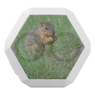 Squirrel Snacking White Boombot Rex Bluetooth Speaker
