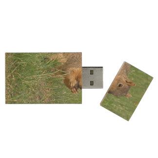 Squirrel Snacking Wood USB 2.0 Flash Drive