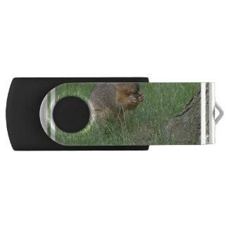 Squirrel Snacking Swivel USB 2.0 Flash Drive