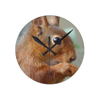 Squirrel squirrel Écureuil Round Clock