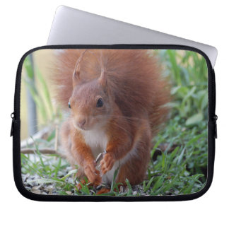 Squirrel Squirrel ~ photo Jean Louis Glineur Laptop Sleeve