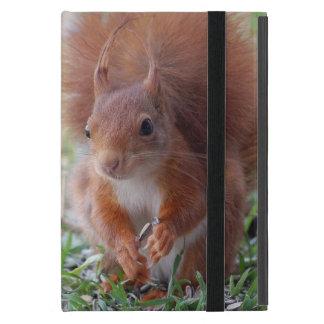 Squirrel ~ squirrels ~ Écureuil Cover For iPad Mini