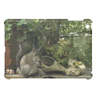 Squirrel Treats iPad Case
