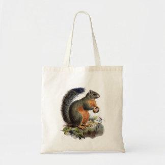 Squirrel vintage illustration tote bag