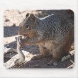 Squirrel vs. Rattlesnake Mousepad