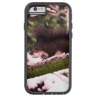 Squirrel Winter Photo  iPhone 6/6s, Tough Xtreme Tough Xtreme iPhone 6 Case