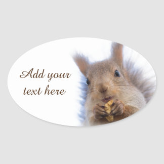 Squirrel with a walnut oval sticker