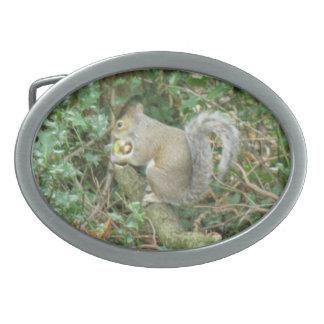 Squirrel with Acorn Belt Buckle