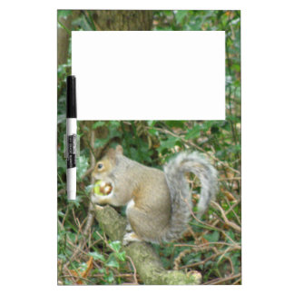 Squirrel with Acorn Memo Board