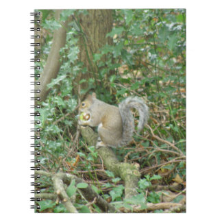 Squirrel with Acorn Notebook
