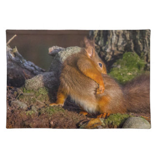 Squirrel With An Itch Placemat