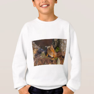 Squirrel With An Itch Sweatshirt