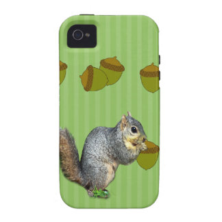 Squirrel with Nuts Case-Mate iPhone 4 Case
