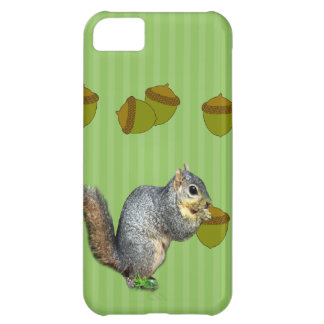 Squirrel with Nuts iPhone 5C Cases