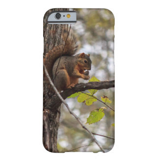 Squirrel with Walnut Barely There iPhone 6 Case