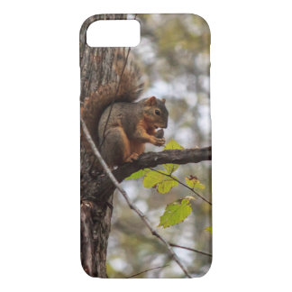 Squirrel with Walnut iPhone 7 Case