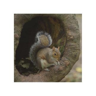 Squirrel Wood Wall Art Wood Canvas