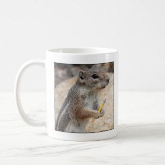 Squirrel Writer Mug
