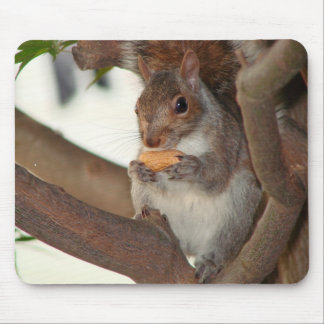 squirrelfriend mouse mat