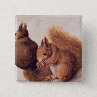 Squirrels, 1512 15 cm square badge