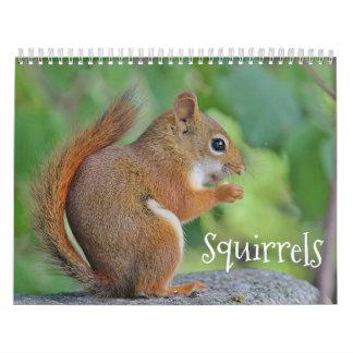 Squirrels Calendars