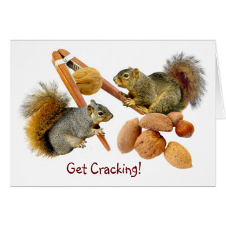 Squirrels Cracking Nuts Greeting Card