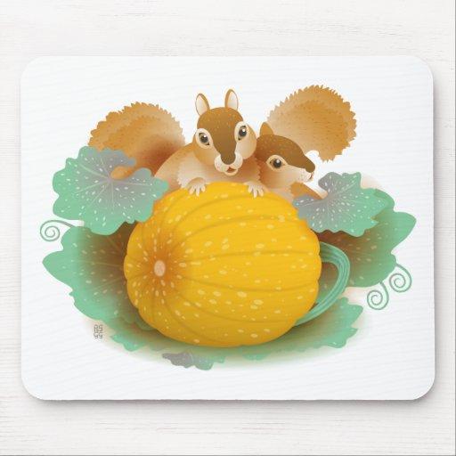 squirrels in the pumpkin patch mousepads