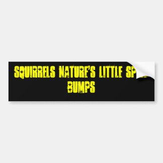 Squirrels Nature's Little Speed Bumps Bumper Sticker