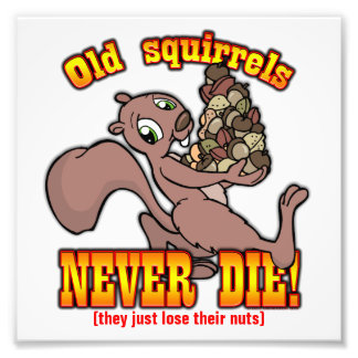 Squirrels Photo Art