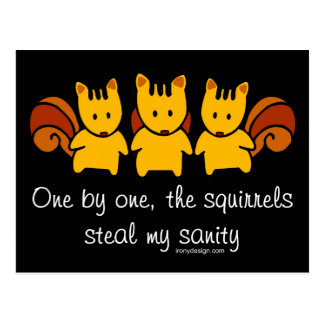 Squirrels steal my sanity post cards