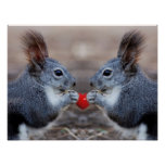 Squirrels with a heart poster