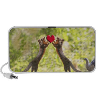 Squirrels with Heart iPhone Speaker