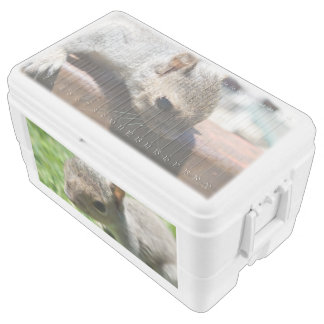 Squirrely Squirrel 48 Quart Igloo Ice Chest