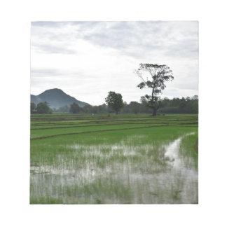 Sri Lanka rice fields Notepad