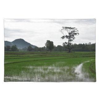 Sri Lanka rice fields Placemat