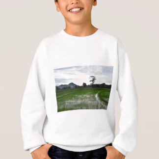 Sri Lanka rice fields Sweatshirt