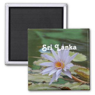 Sri Lanka Water Lily Magnet