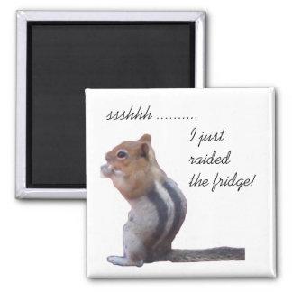 ssshhh ......... I just raided the fridge! Square Magnet
