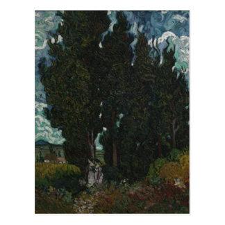 ?sszefoglal? Description Cypresses with two figure Postcard