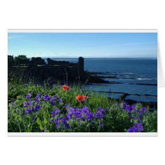 St Andrews Amongst Wild Flowers Card