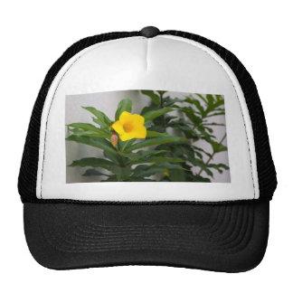 St. Augustine Flower Cap