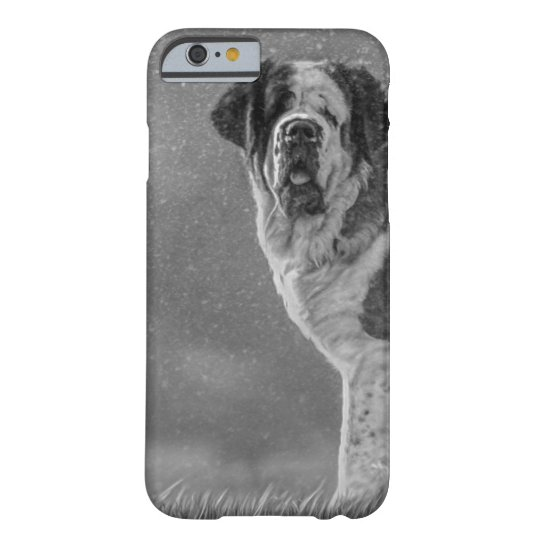 St Bernard dog Barely There iPhone 6 Case