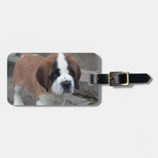 st bernard pup luggage tag