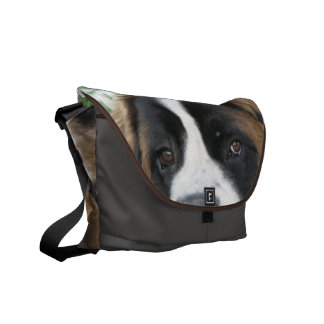 St Bernard Puppies Messenger Bag