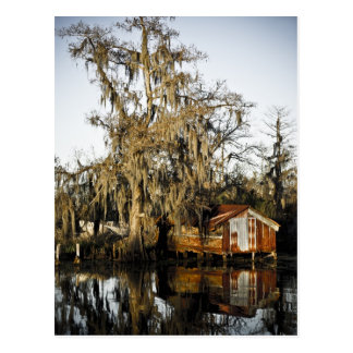 St Charles Parish Swamp Reflections Post Cards
