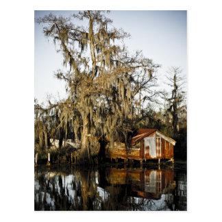 St Charles Parish Swamp Reflections Postcard