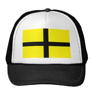 St David s Day - Flag Mesh Hats